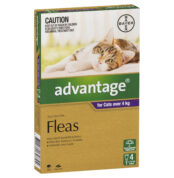 Advantage Fleas For Cats Over 4kg - 4 Pack-0
